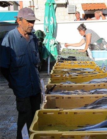 Black Risotto Trogir fish market