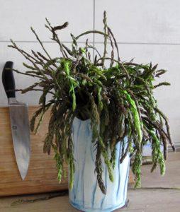 Wild Asparagus