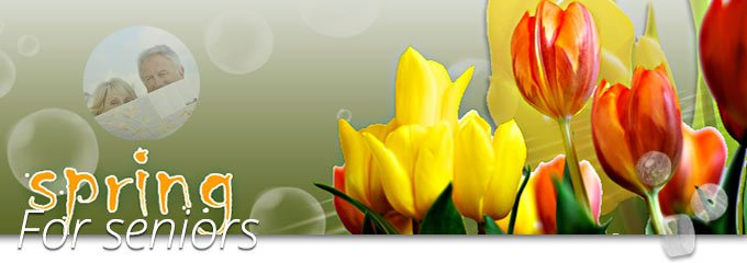 Senior Spring Offer
